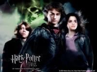 Harry Potter and The Goblet of Fire - click for larger image